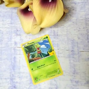 25th Anniversary McDonald's Treecko Pokemon Card
